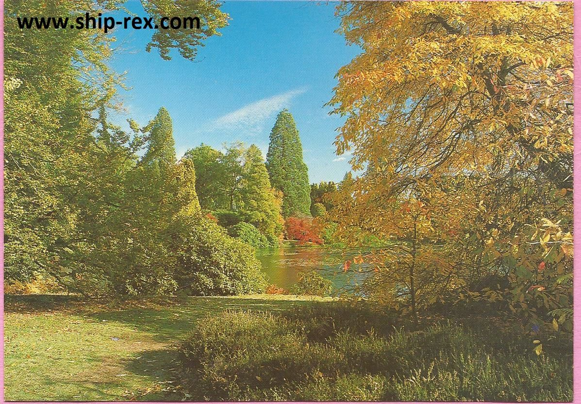 Sheffield Park Gardens Autumn View postcard